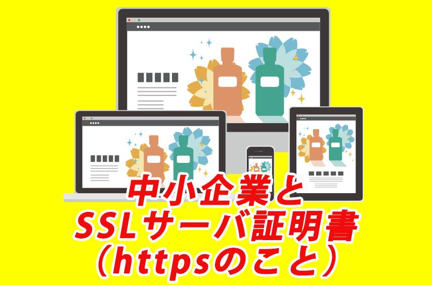 SMEs and SSL Server Certificates